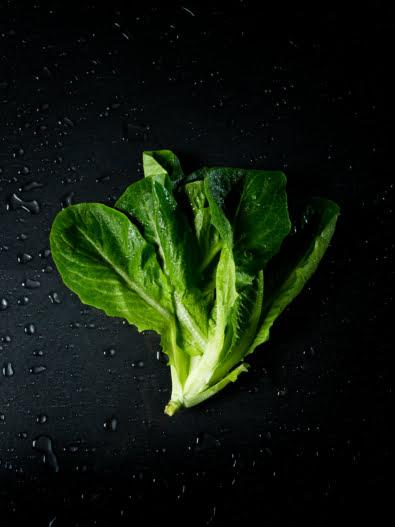 Kuvassa on romaine-salaatti mustalla taustalla.